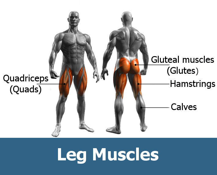 workout for glutes and legs