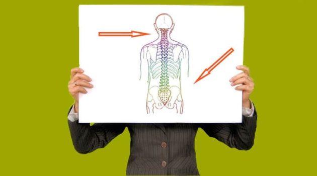 exercise and bone density