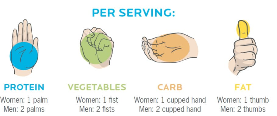 use your hands to estimate what your meals should be made of