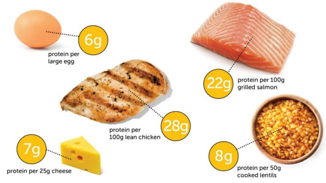 Protein meal ideas