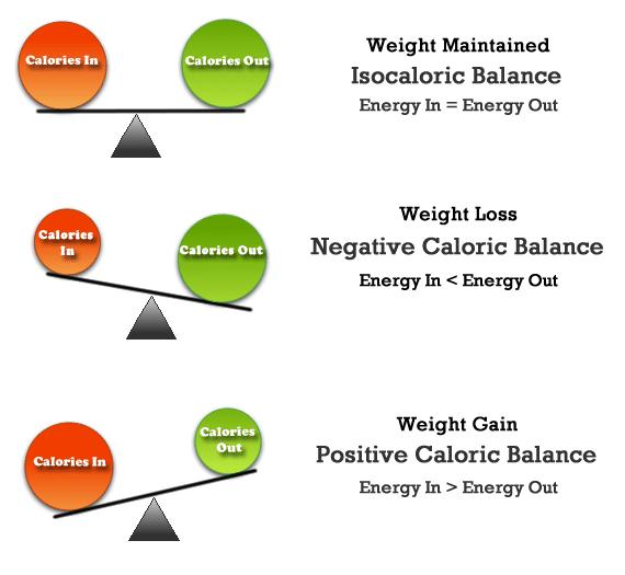 Cla vitamin weight loss