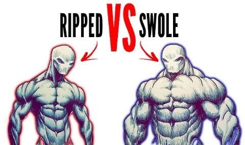 ripped vs swole