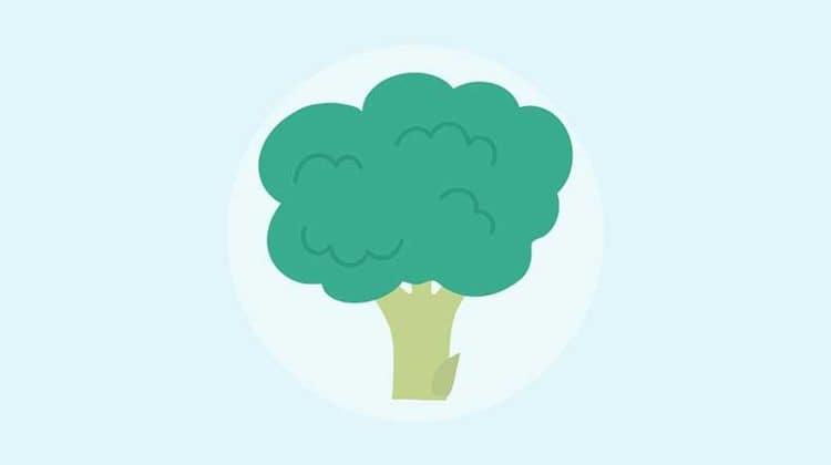 net carbs in broccoli