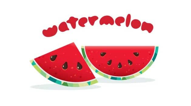 Net Carbs in Watermelon