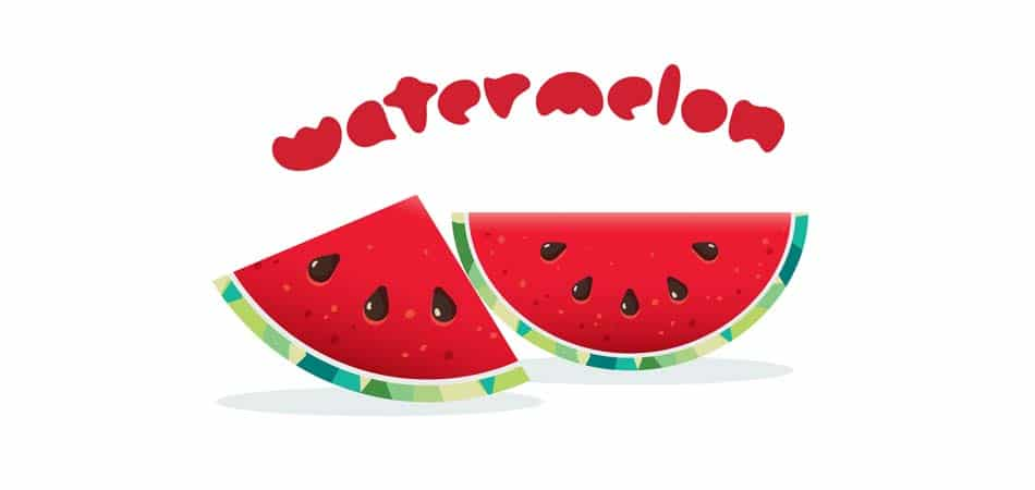 Net Carbs in Watermelon