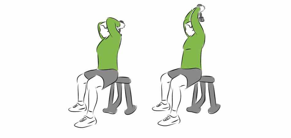 triceps medial head exercises
