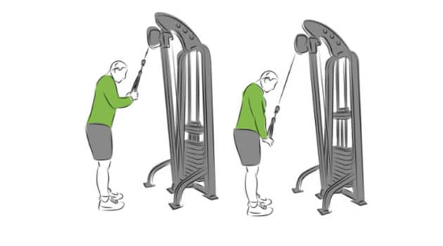Triceps cable workout